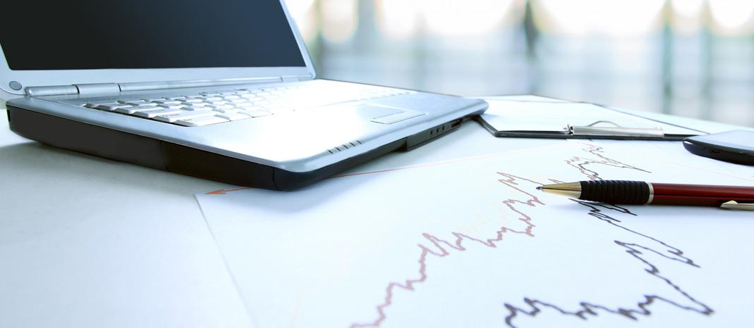 Understanding the Numbers: Accounting and Financial Analysis for your Business