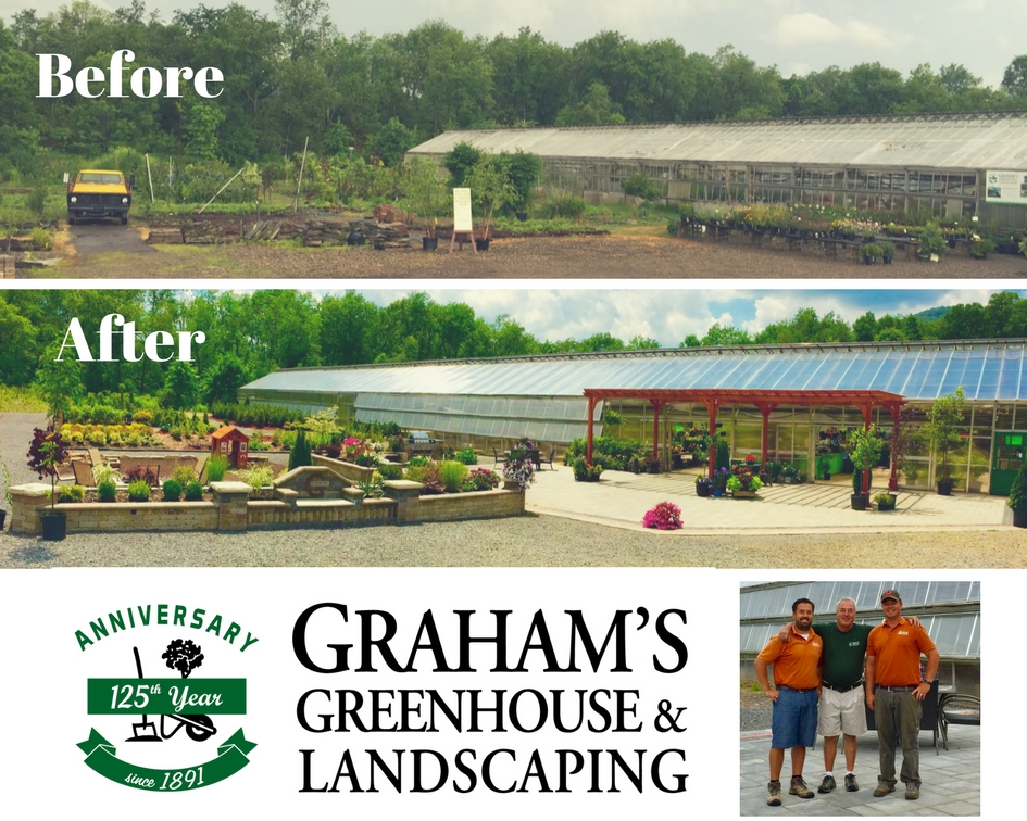 grahams greenhouse collage